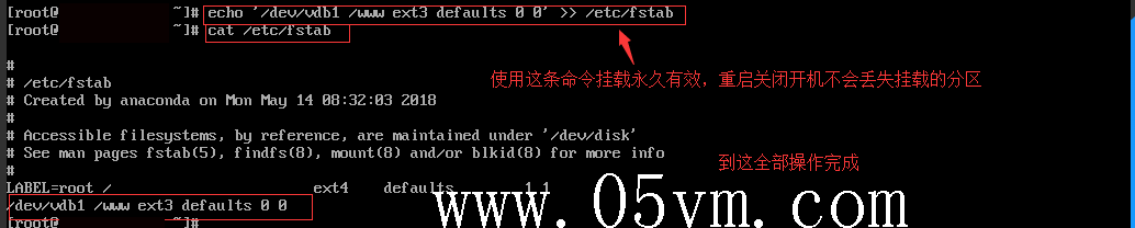linux数据盘永久命令